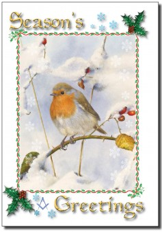 PJ 1702 XMAS snowy robin for web