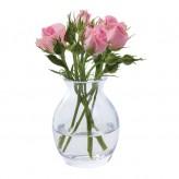 flower_garden_bloom_full